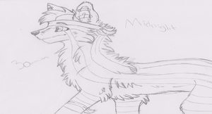 Character Forum: Midnight Traditional by DemoniaTheGuardian