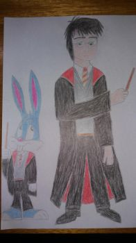 Harry potter and Buster bunny by derkman