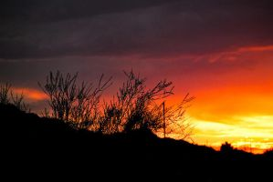 Arizona Sunset by lissagayle