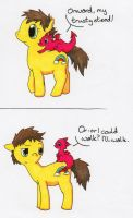 Save a Pony by MineralRabbit