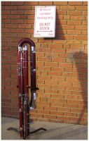 Bassoon Parking by Inonibird