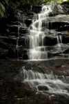 Somersby Falls revisited 2 by wildplaces