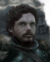 Robb by LiaSelina