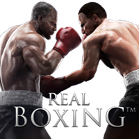 Real Boxing Dock Icon by Rich246
