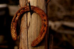 Lucky Horseshoe by Caitiekabob