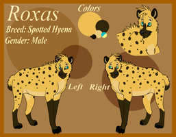 Character Design CO: Roxas Reference Sheet by jrl8111