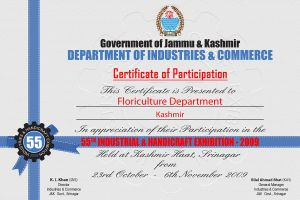 Certificate of Participation by krishsajid