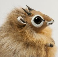 Dik-Dik Furry Creature by RamalamaCreatures