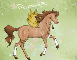 Dreamcather by LuisaVFM