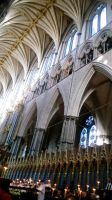 Inside Westminster by Lux1311