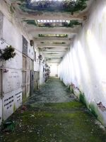 Crypte des Fleurs   Death gallery by xNatje