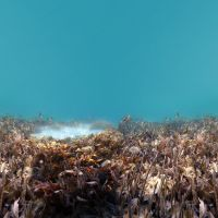 Underwater Premade BG by YBsilon-Stock by YBsilon-Stock
