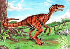 Velociraptor by Tadeu-Costa