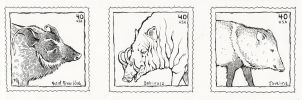 assignment - wild pig stamps by luve