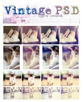 Vintage PSD by conceptually