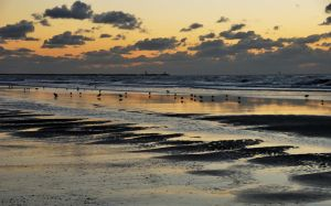 Late evening mood at North Sea by jchanders