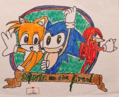 REALLY old pic of Team Sonic by alishadowriter