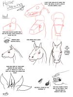 Horse Drawing: Heads by modesty