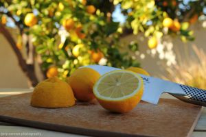 When Life Hands You a Lemon... by worldtravel04