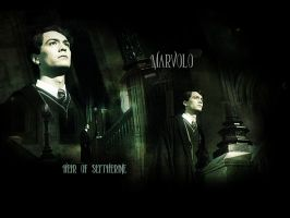 tom riddle wallpaper by lancelotfan