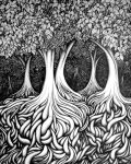 Trees and Roots by didurr