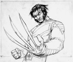 Wolverine by pungang