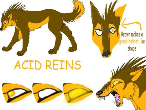 New Acid Reference Sheet by acidreins