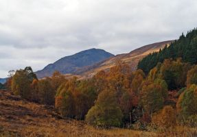 River Affric by piglet365