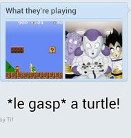 *le gasp* A turtle! D: by Annaley