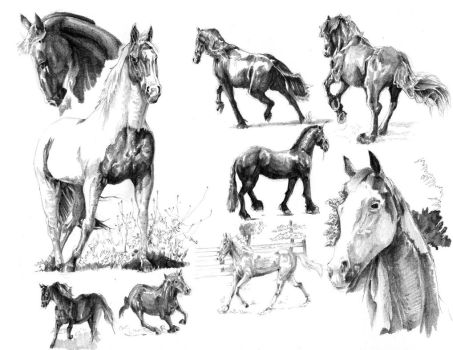 Horse Study by L235