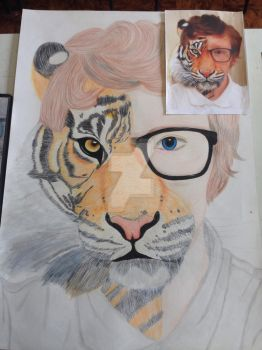 Human/Tiger Merge (Art Mock Exam) by AstroLuxray