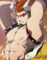 Bowser by heavenhellexe