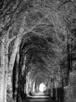 Light at the end of the tunnel by Kitanokata
