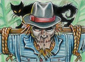 "ATC: ""Scarecrow and His Cat"" by catbones"