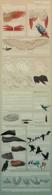 Feathered wings - Tutorial by Nereiix