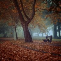 Sometime Someone by ildiko-neer