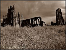 Whitby Abbey (2012) by WendyKimberley