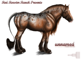 021 ~ Foundation Mare Import Sale by Sarahroo