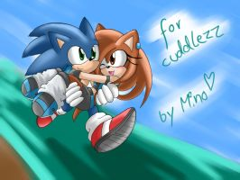 Request: Calley and Sonic by mino-the-cat