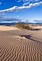 Death Valley Sand Dunes 1 by arches123