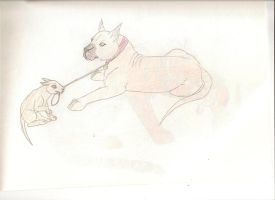 Dane and pup by ShadowOrder7