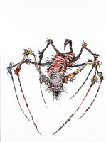 Spider Lady by CliveBarker