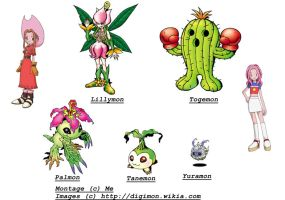 Evolutions of Palmon by TiagoMC