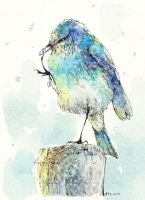 Watercolor Winter Bird by Zaozi-Nanaly