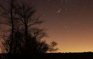 Starry Sky Stock 3 by HOTNStock