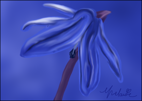 Squill Painting by Itsgoose2u