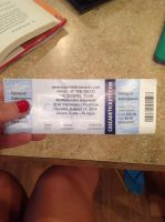 Panic at the disco concert ticket by BriefZ466