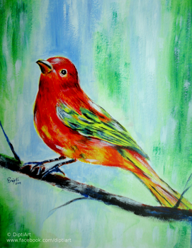 Summer Tanager by DiptiArt