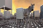 Two Kinds of Zebras by allthenightlong