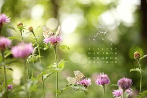 Butterfly calendar for June by Gulfiya